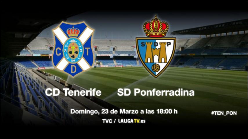 Lucha de intereses en Tenerife